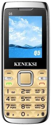 Мобільний телефон Keneksi Q5 Golden 1