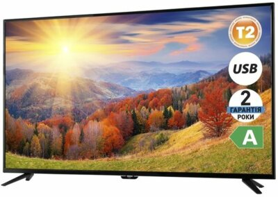 Телевизор Ergo LE55CT2000AK 2