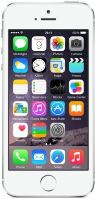 Смартфон Apple iPhone 5s 16Gb Silver 1