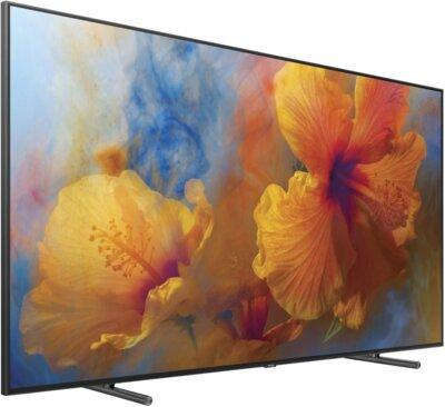 Телевизор Samsung QE88Q9FAMUXUA 2