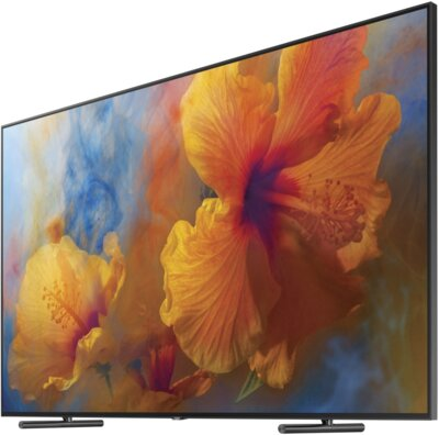 Телевизор Samsung QE88Q9FAMUXUA 4