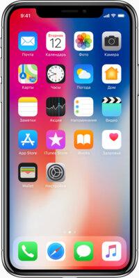 Смартфон Apple iPhone X 256Gb Space Grey 1