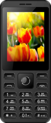 Мобильный телефон Nomi i249 Black 1