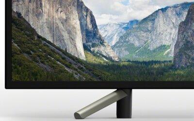 Телевізор Sony KDL43WF665BR Black 6