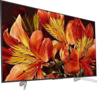 Телевизор Sony KD49XF8596BR Black 2