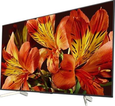 Телевизор Sony KD49XF8596BR Black 3