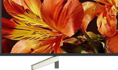 Телевизор Sony KD49XF8596BR Black 7