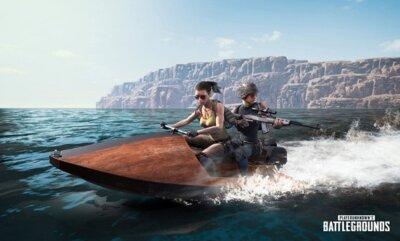 Игра Playerunknown's Battlegrounds (PS4, Русская версия) 7